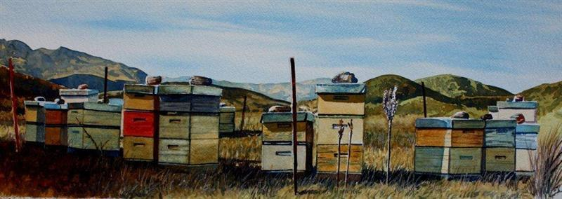 Beehives Towards Glendhu Bay