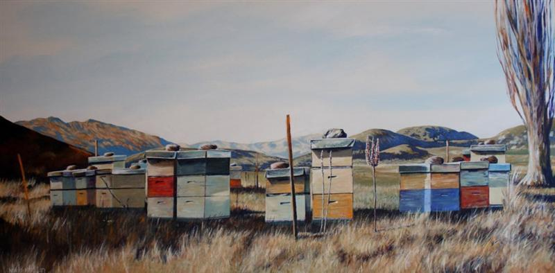 Beehives on the way to Glendhu Bay, Wanaka