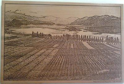Ruby Island, Rippon Vineyard, Lake Wanaka by Peter Dozzi